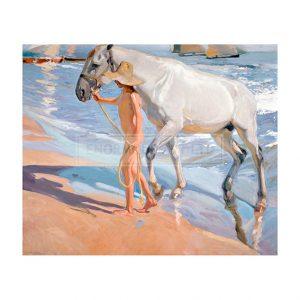 SOR012 The Horses Bath