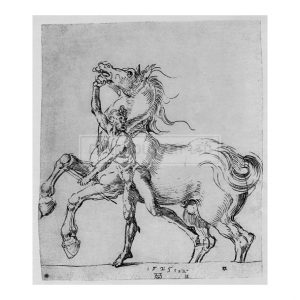 DUR035 Nude Man with Horse