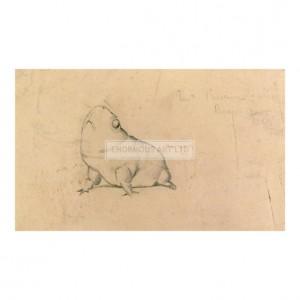 BUR032 A Bull Frog, 1893