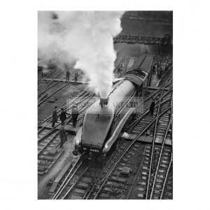 ANO019 Golden Eagle Steam Train, Kings Cross