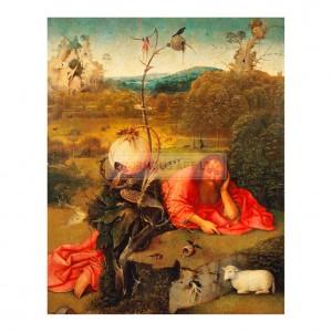 BOS015 Johannes der Taufer in der Wuste