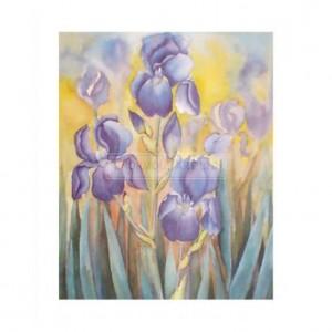 BW7081 Sunny Irises