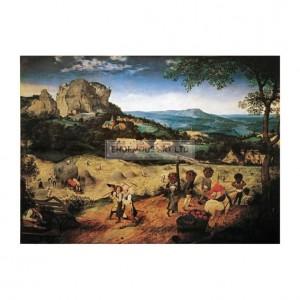 BRU034 Hay Harvest 1565