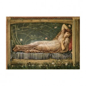 BUR005 Sleeping Beauty