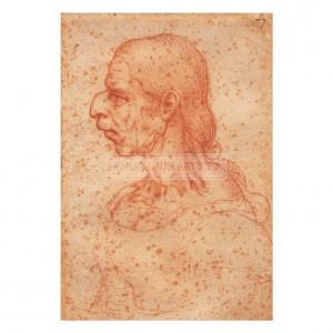 DAV016 Grotesque Head of an Old Woman in Profile