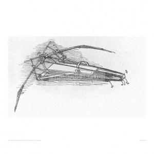 DAV056 Flying Machine 4