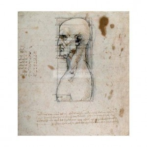 DAV009 Proportions of the Human head, 1490