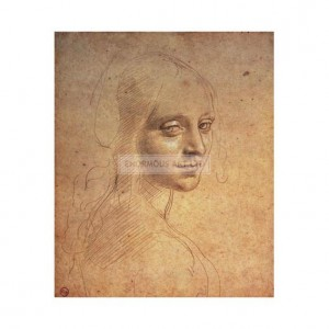DAV013 Study of a Young Woman's Head, 1483