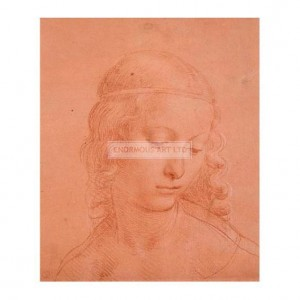 DAV015 Study of a Young Woman's Head, 1508