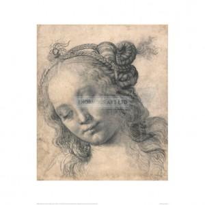 MA085 Head of a Woman c. 1475