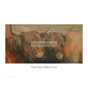 HUL016 Twa Hairy Hielan Coos