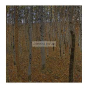 KLI057 Beech Forest