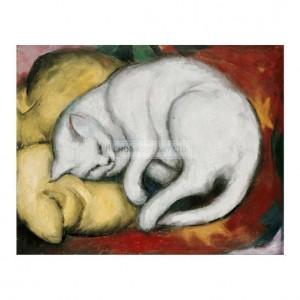 MAR005 The White Cat