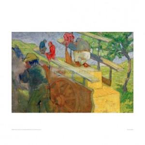 MAR043 Monkey on a Cart