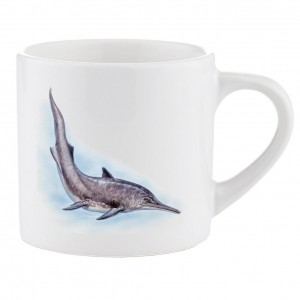 Mug: Mixosaurus D042