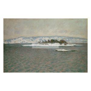 MON256 Fjord 1895