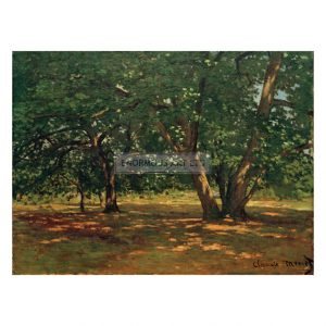 MON260 Forest of Fontainebleau 1865