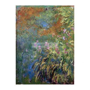 MON287  Irises 1914