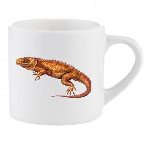 Mug: Planocephalosaurus D053