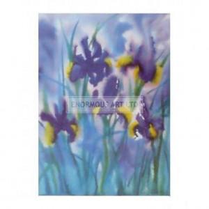 BW1074 Irises I