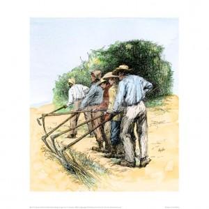 SLA115 Field Hands Hooking up Sugar Cane, Louisiana