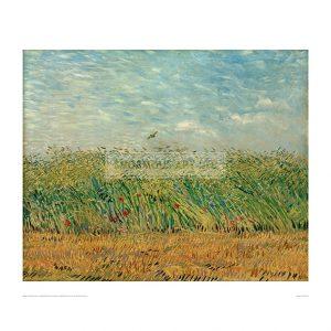 VAN025 Cornfield with Poppies and Partridge