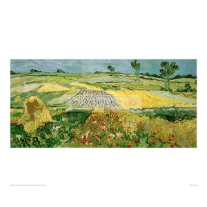 VAN046 Field in Auvers