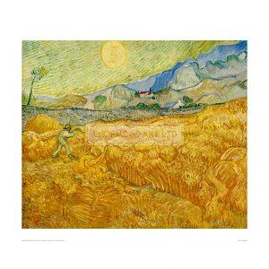 VAN056 Harvest