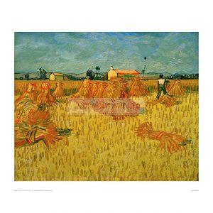 VAN057 Harvest in Provence