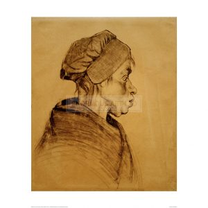 VAN059 Head of a Woman, 1884
