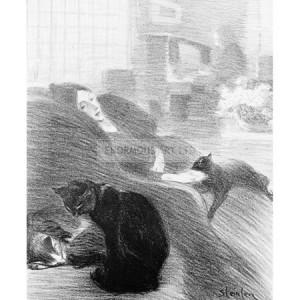 STE001 Frippery, 1897