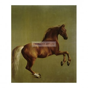 STU001 Whistlejacket