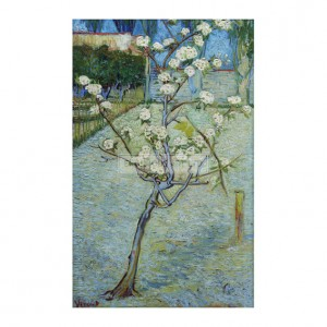 VAN012 Blossoming Pear Tree, 1888
