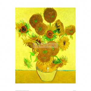 SA047 Sunflowers