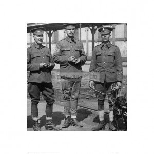 WW1374 Three British Soldiers and Their Dog